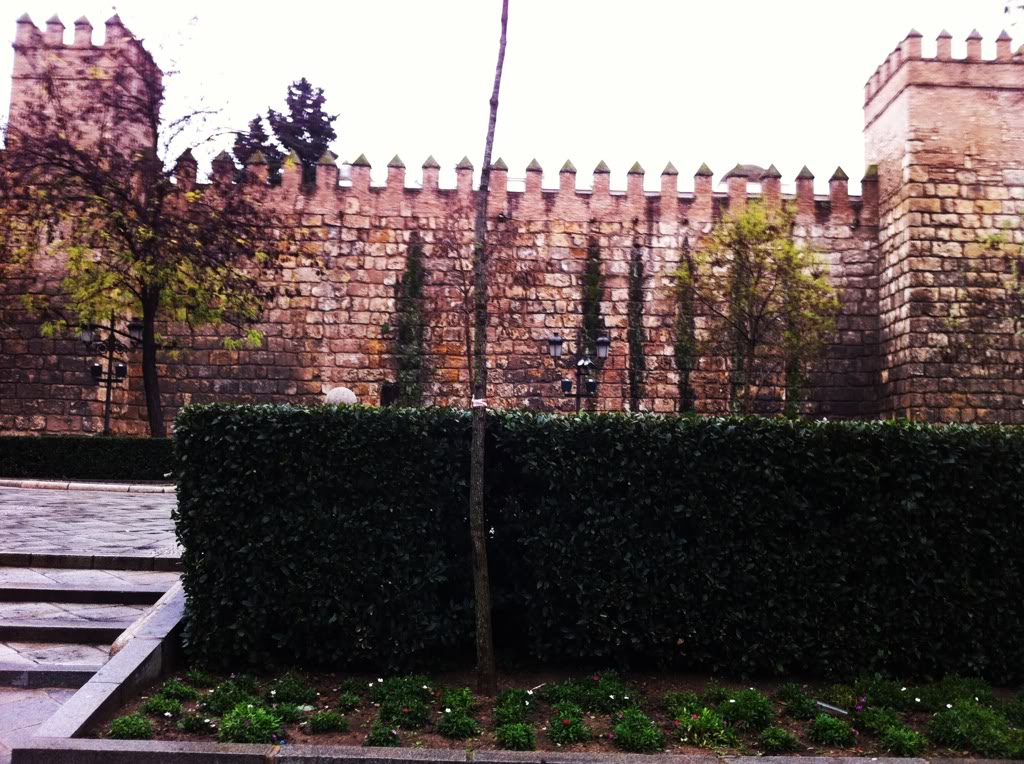 Small Part of the Real Alcazar Wall
