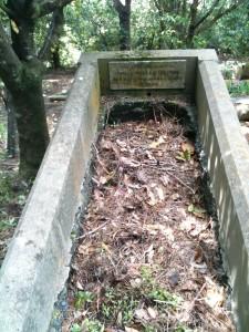 James Miller Ireland Grave