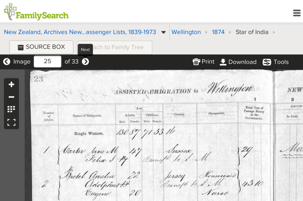 Amelia Bretel with Eugene and Adolphus Passenger List to NZ 1874