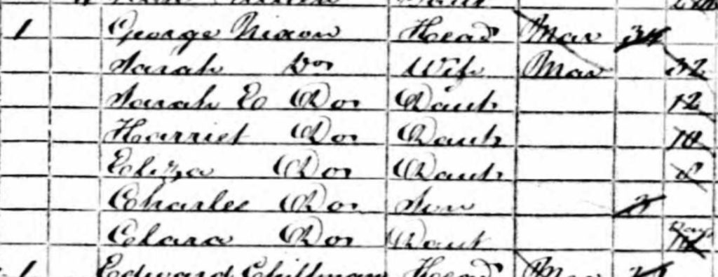 Ancestry 1861 Census NIXON Example