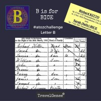 B is for BICE