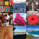 #AtoZChallenge I for Instagram – My 2016 Best 9 on Instagram