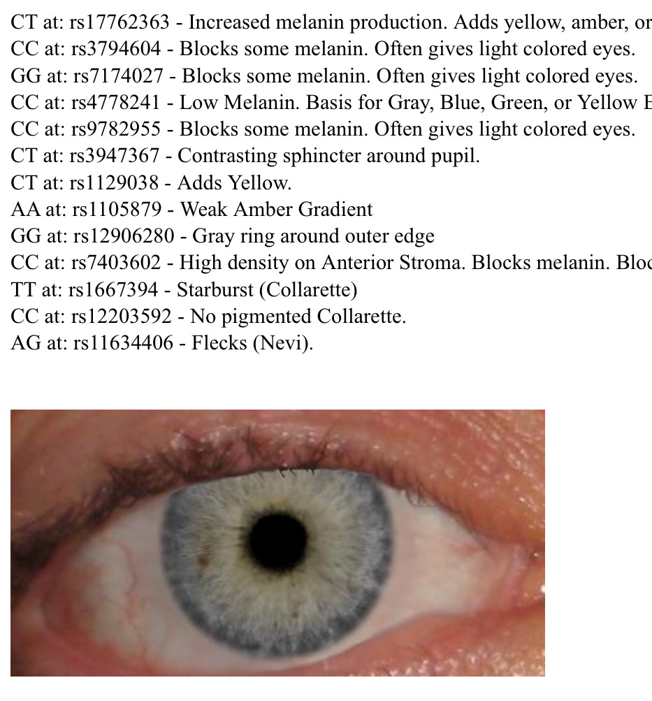 GEDmatch Estimated Eye Colour